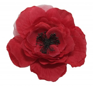 Poppy - Beverley Edmondson charity appeal